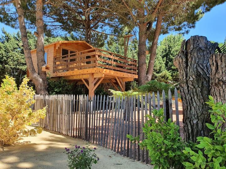 Escapade détente, jardin luxuriant- La pinède