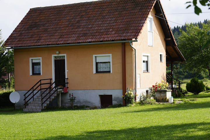 House near Forest & Plitvice Lakes (max 6 people) - Saborsko - Apartament
