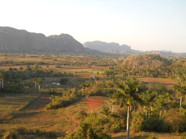 Casa Omar y Mayra,the best option - viñales  - House