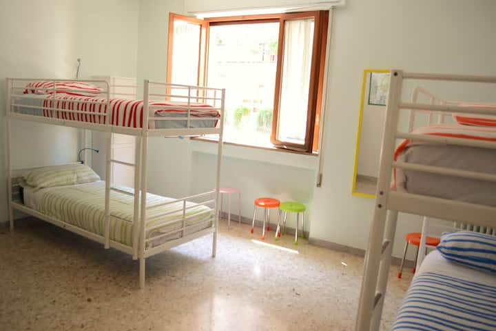 Olive Tree Hostel, 1 bed in 8 person dormitory