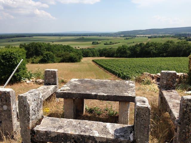 Chambre pour quatre au coeur d'un domaine viticole