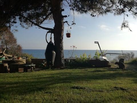 "Corfu sea front apartment, ""The nest II"""