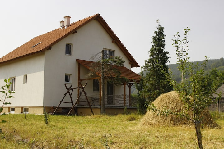 Cozy vacation house in Praid