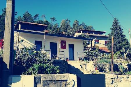 Moradia T1 - Pico de Regalados - Hus