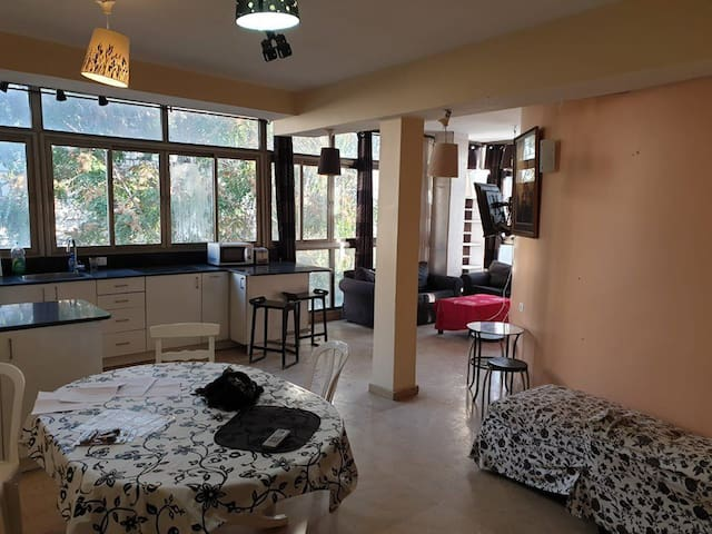 Sublet in Beutiful Rehavia, center of jerusalem