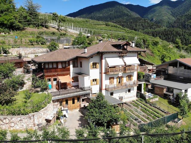 Vacanza in un maso del Trentino/Val di Non