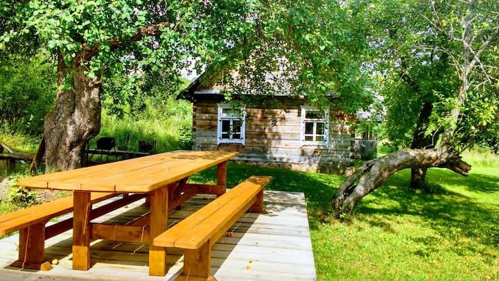 Traditional Lithuanian Homestead
