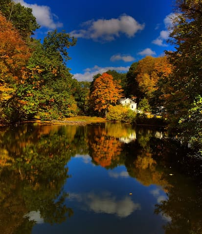 Serene Waterfront Mill House, Stroll to Village