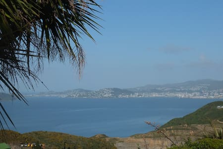 The best view in Wellington awaits you!