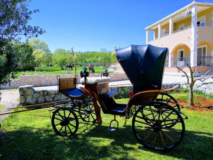 Our carriage - tour possibility