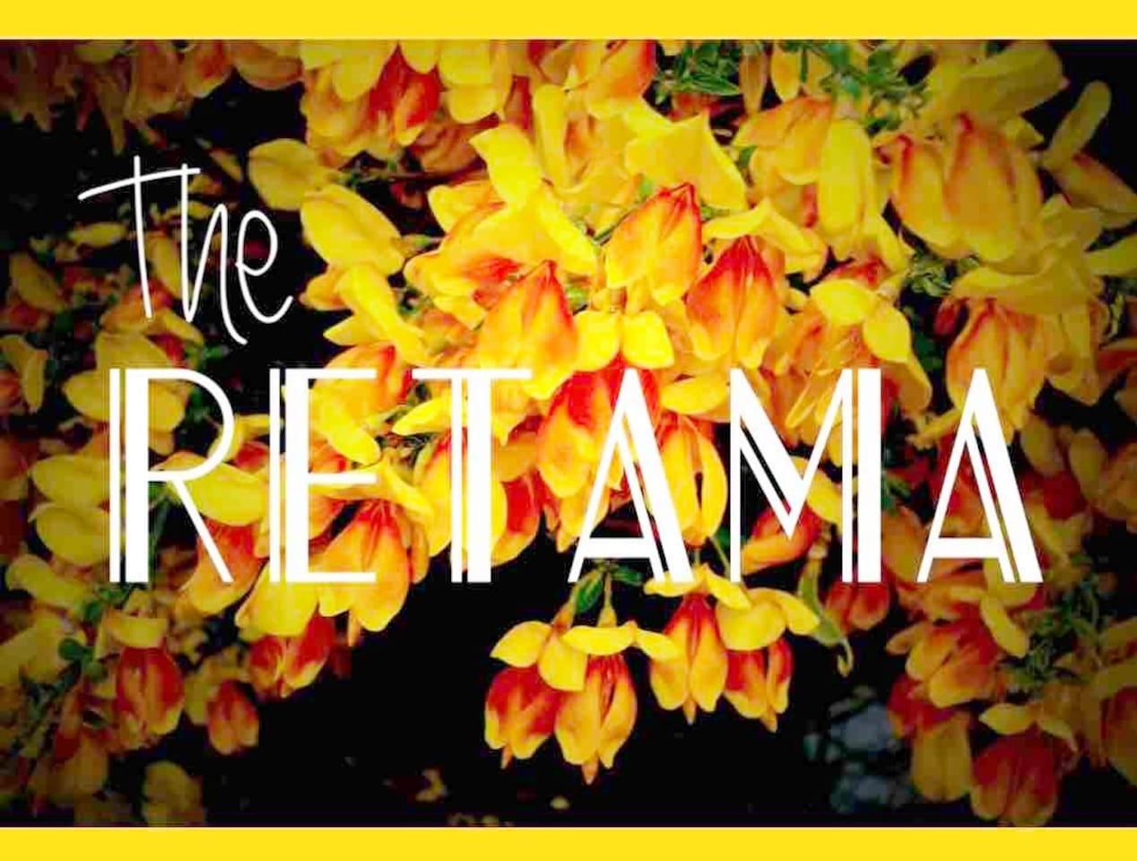 THE RETAMA IN SOUTHTOWN — WALK TO EVERYTHING!
