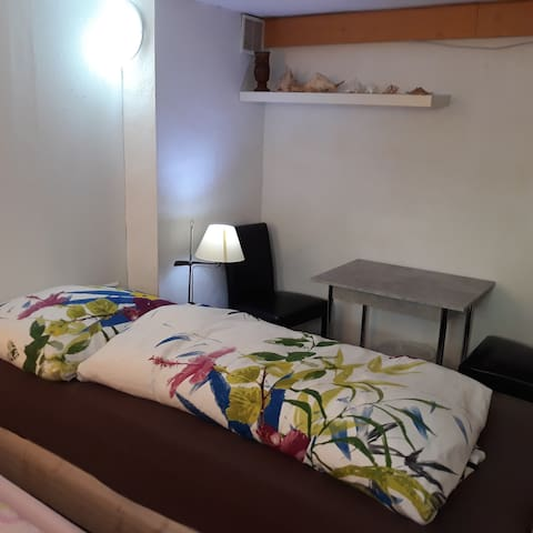 Priv basement room, twin beds, 15 min from center