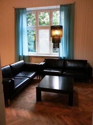 Apartament z widokiem na Zamek  -  centrum BB