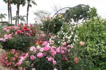 Henry Otsubu Community Gardens