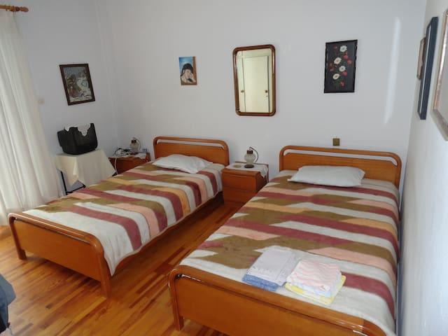 Home in Konitsa #1 - Konitsa
