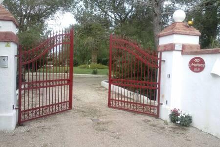 Appartamento taverna in grande giardino a Ugento - Ugento