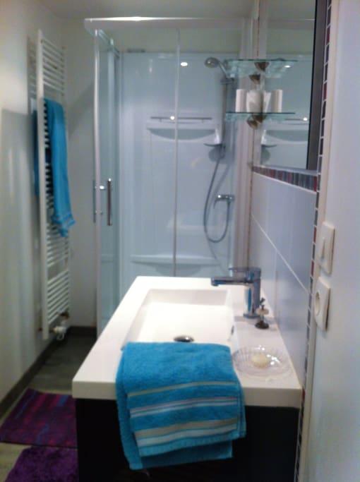 Espace salle de bain avec douche, vasque et wc