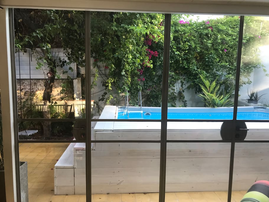 The swimming pool - a look from the living room