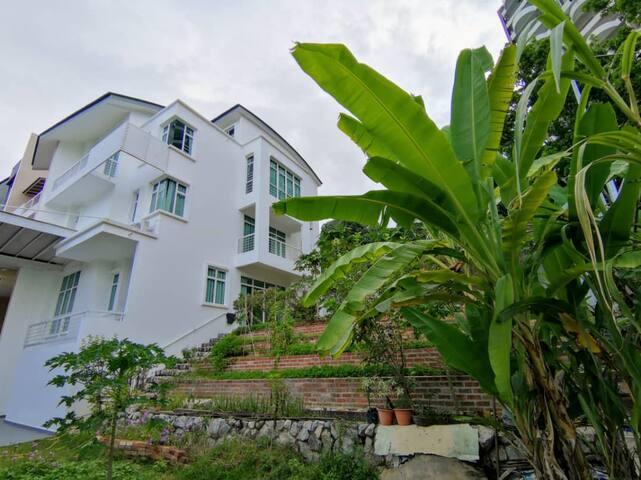 Batu Ferringhi Shamrock Holiday Villa