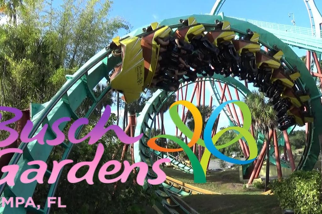 close to Busch Gardens thrilling rides for the adrenalin seekers