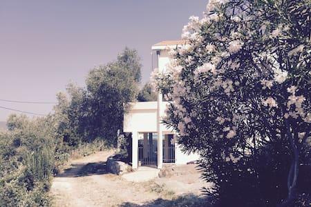 Villa Olive Tree, Mrkovi, Lustica - Luštica