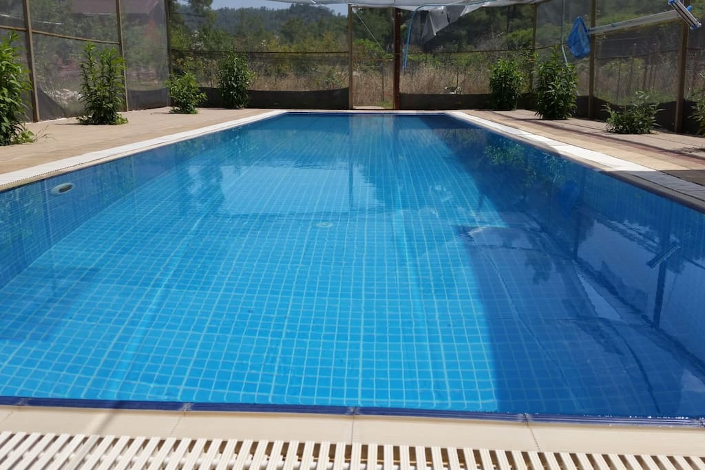 open air swimming pool big enough, clean and just for you, 24 hours swimm facility