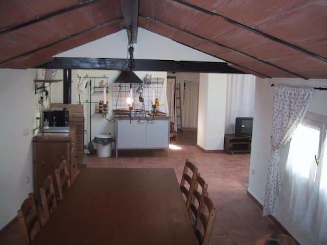 Buhardilla en pequeño pueblo - Secastilla - Apartament