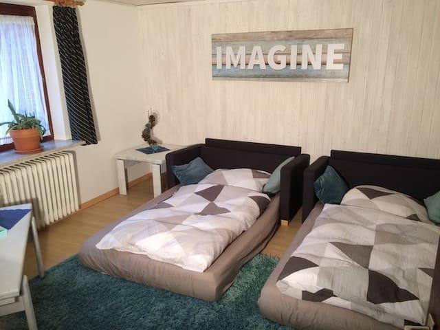 Wohnzimmer mit ausgezogenen Schlafsofas Nr 1 und 2,  je 1,20m x 2m