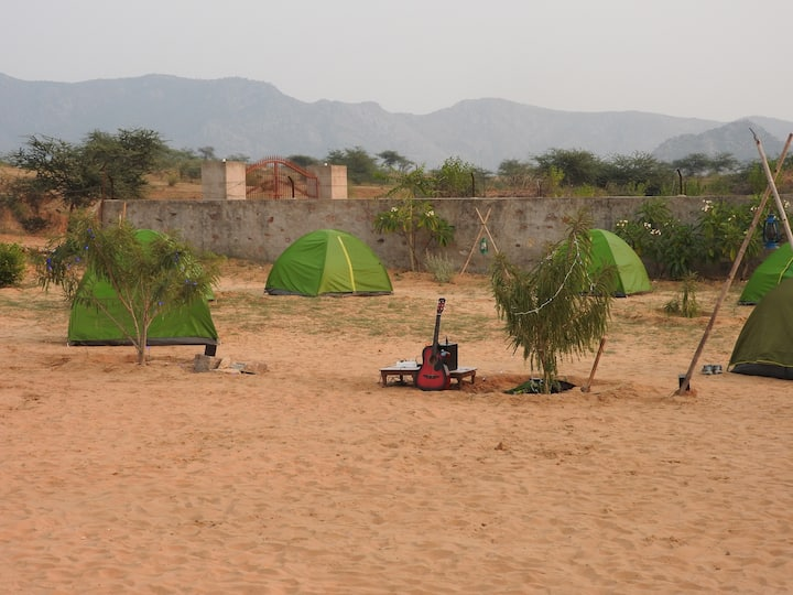Adventure Camping With Camel Safari In Pushkar