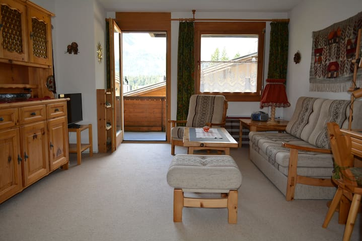 Lovely apartment in Maloja (Engadin-Switzerland) - Bregaglia - Apartamento