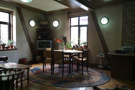 Beautiful Peles Castle Apartment - シナイア