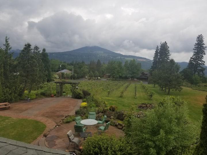 Vineyardview Vacation Home