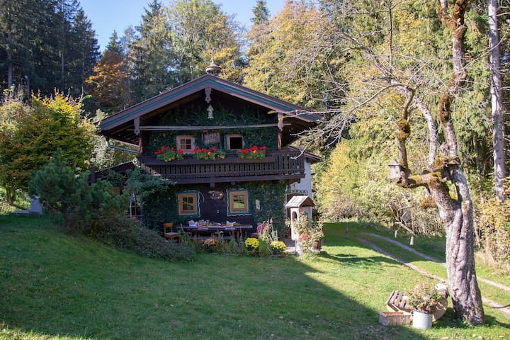 Cozy Holiday Home in Thiersee near Forest