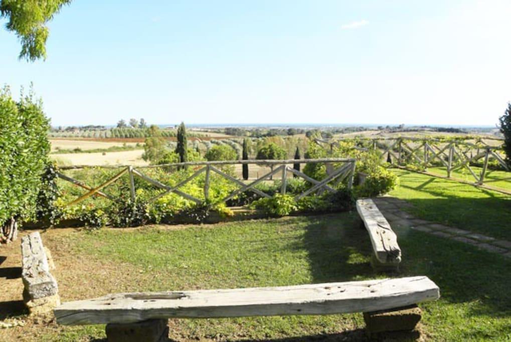 particolare giardino sud (verso sud -  vista mare)