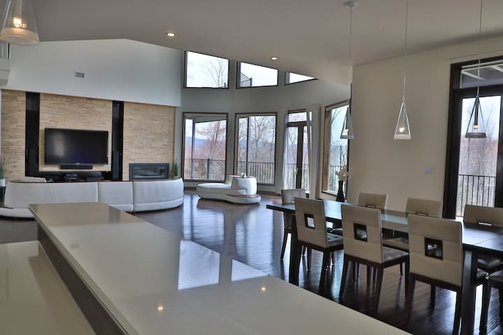 luxury modern mansion near new york city houses for rent in