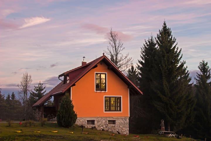 Geräumige Hütte mit Terrasse & Wifi
