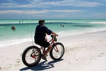 Beach Cruising - low and mid tide, amazing!
