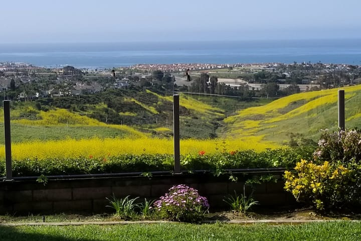 Rare Hilltop Oceanview Estate