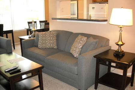 LOVELY 1BR/1BA in Schaumburg - Schaumburg