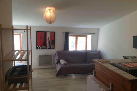 Studio 2/4 pers 5 min centre ville et gare - Le Puy-en-Velay