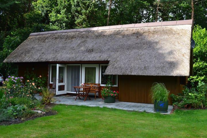 Waldhaus mit Schwimmbad und Sauna - Geestland - House