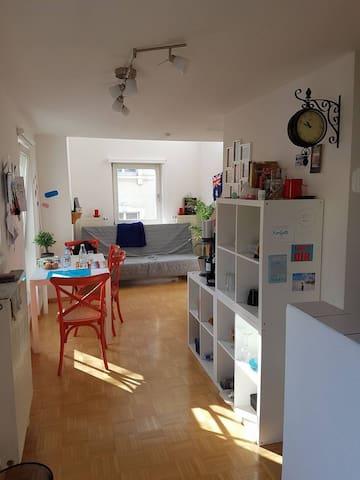 helle, freundliche & offene Wohnung - Freiburg im Breisgau - Huoneisto