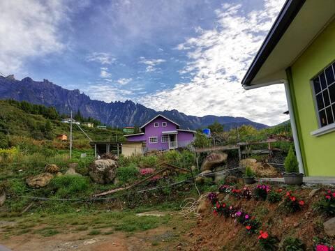 Hazelyn's Cottage / Homestay