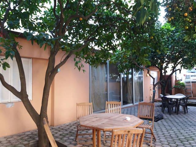 T2 indépendant dans jardin de ville arboré - Ajaccio - Talo