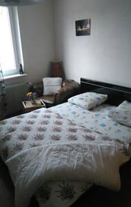 Belle chambre propre près de tout  - Ottmarsheim - 단독주택