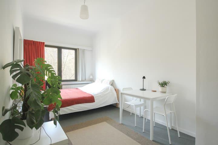 Spacious room in a split level apartment