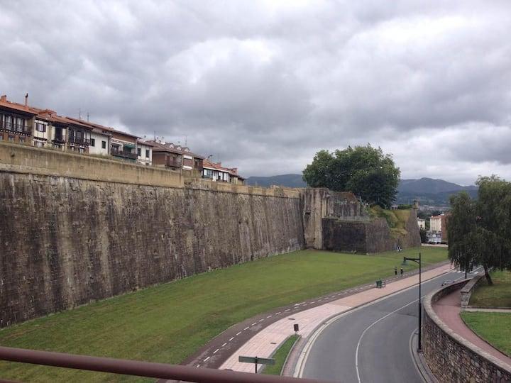 Precioso aparto. al lado de las murallas ESSO1885