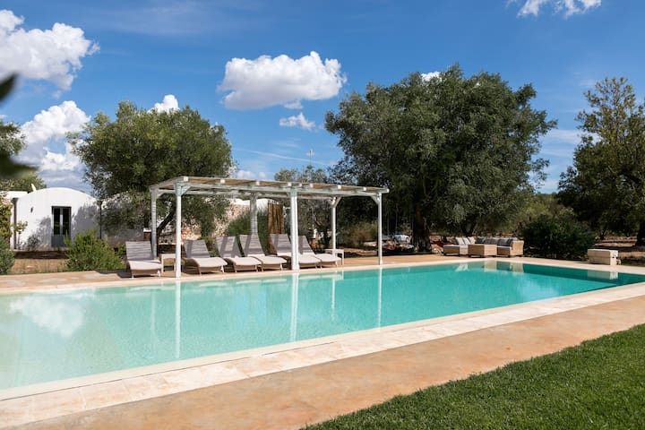 Typical Villa with Huge Pool in olive grove