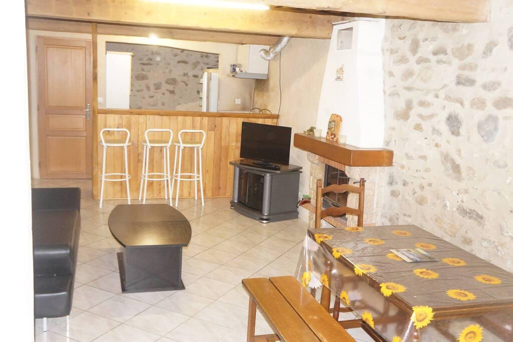 Pièce à vivre avec cheminée, cuisine ouverte et canapé lit