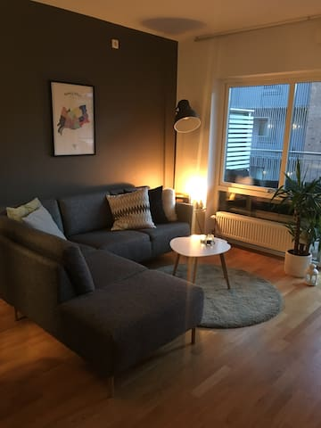 Cosy apartment located in old town Oslo